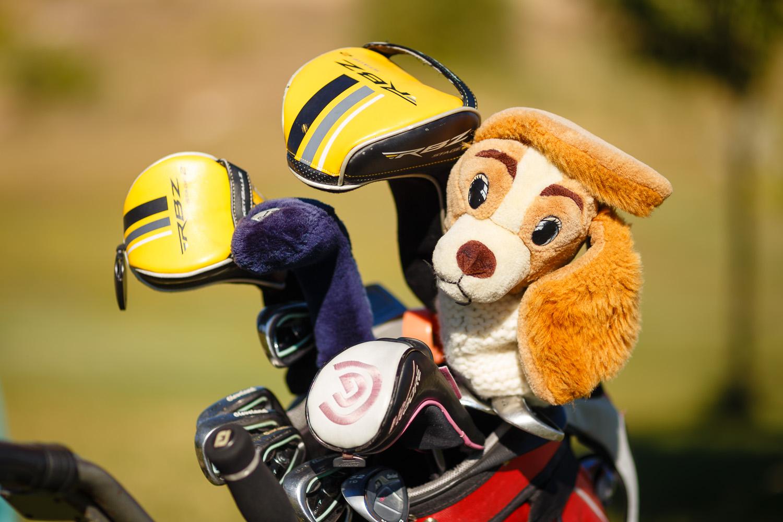 Circuito de Golf escrol: Quinta prueba en Saldaña.